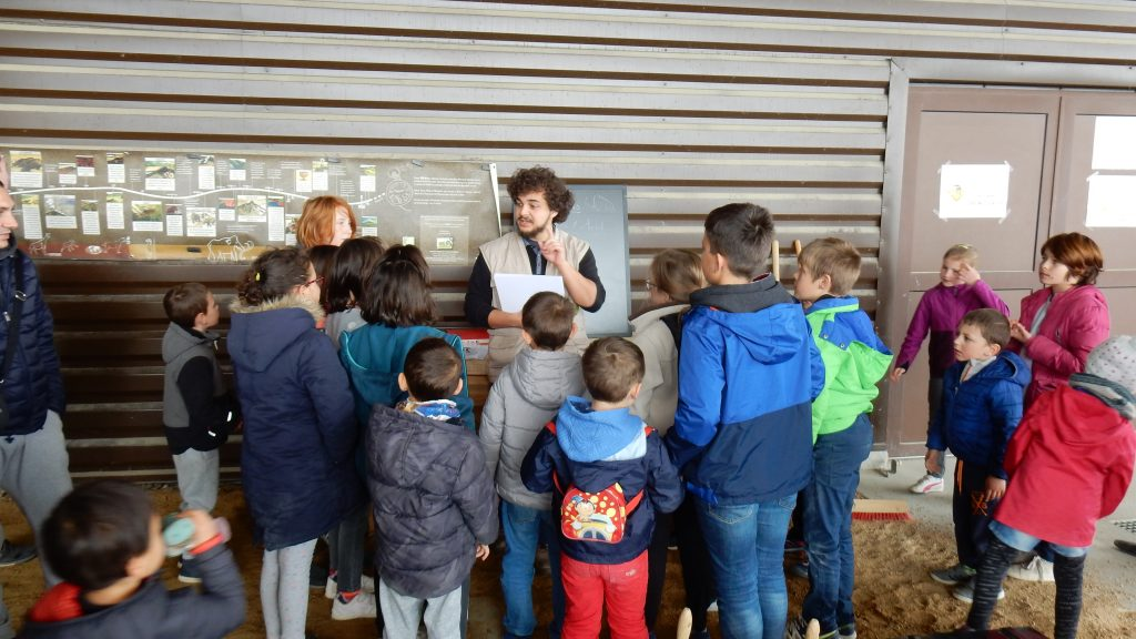 B- Groupes scolaires 2 LG